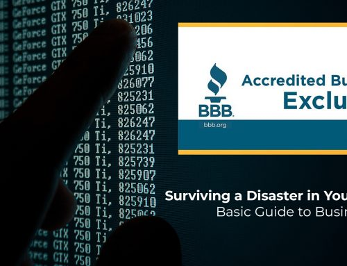 Surviving a Disaster in Your Business: Basic Guide to Business