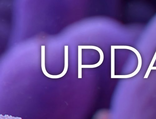 Important Update from AtNetPlus on COVID-19